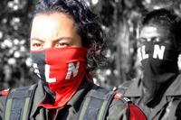 Immagini degli accampamenti FGO eleni in Arauca